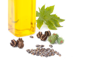 Castor oil bottle with castor fruits seeds and leaf.