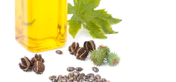 Improve Your Health With Castor Oil