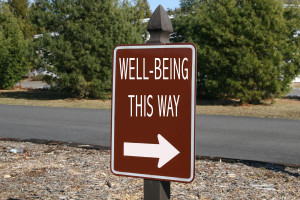 "This sign shows the arrow pointing toward ""well-being"". In our busier than ever lives we all should try to find inner peace for a better well-being!"